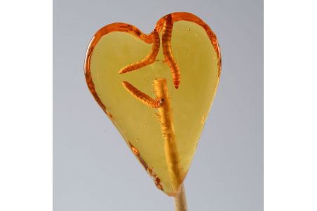 Sucette « Lollibug » Citron